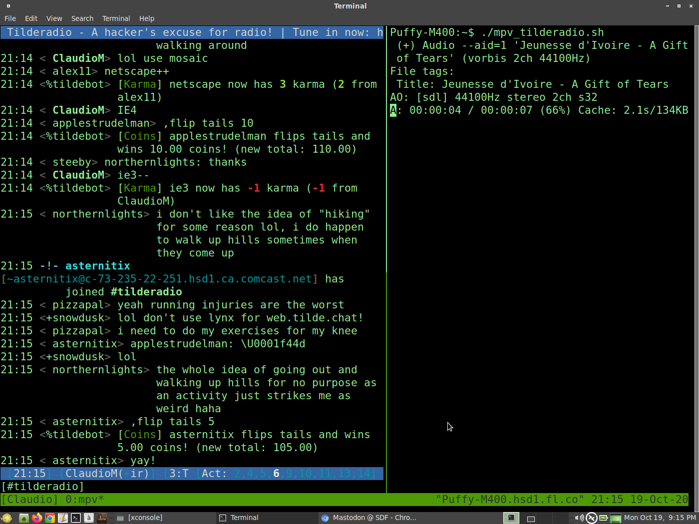 MATE Desktop on OpenBSD 6.8-current with MATE Terminal running maximized with large fonts (because I'm old). Tmux is running with two column panes. Left pane is running Irssi and on the Tilderadio IRC channel. Right pane is playing IGWH on Tilderadio via MPV.